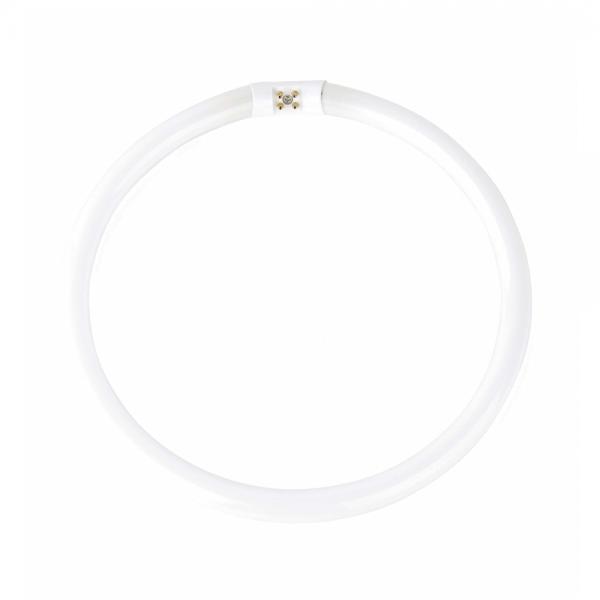 10 tubos circulares de alto rendimiento t5 g10q de 55w - Tubos fluorescentes circulares ...