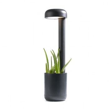 Planter LED baliza 65 cm